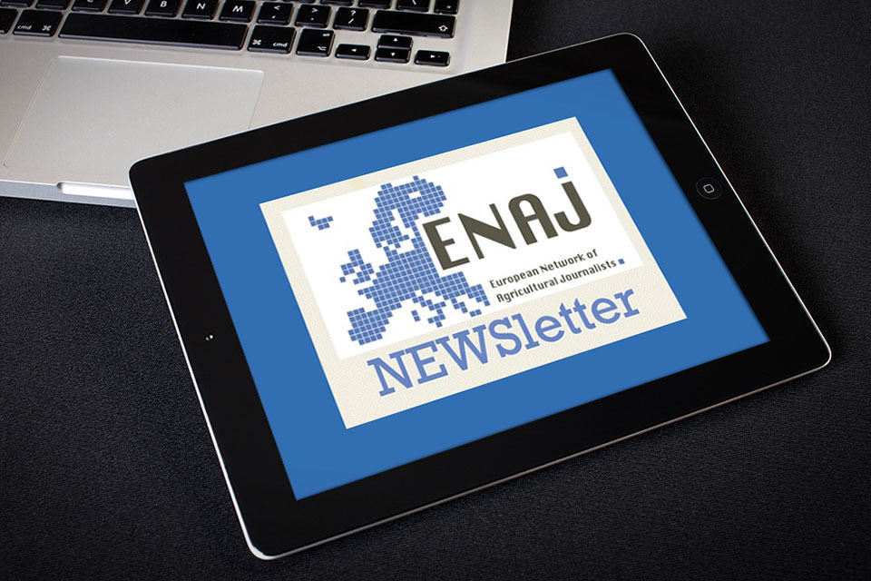 enaj newsletter ipad