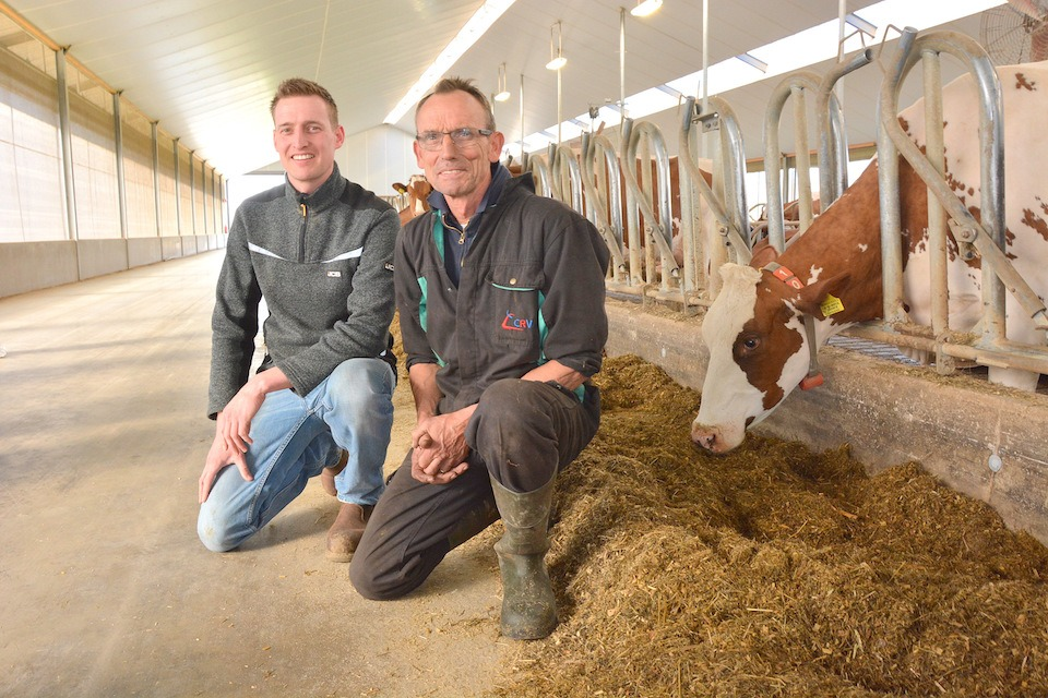 Ivo Hermanussen and his father Jan from Barendonk Holsteins in The Netherlands